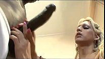 Hard cocks for transsexual holes Vol. 4